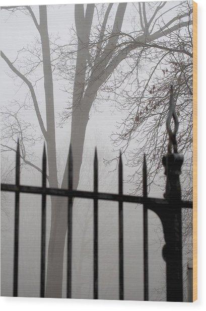 Beyond The Pale Wood Print