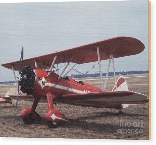 Bi-wing-1 Wood Print