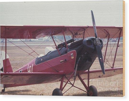 Bi-wing-5 Wood Print