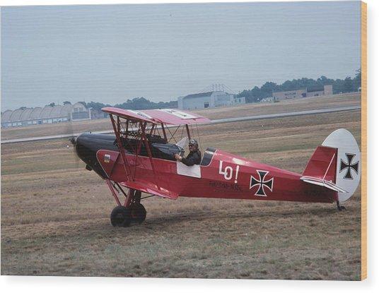 Bi-wing-7 Wood Print