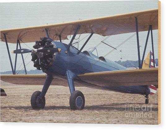 Bi-wing-8 Wood Print