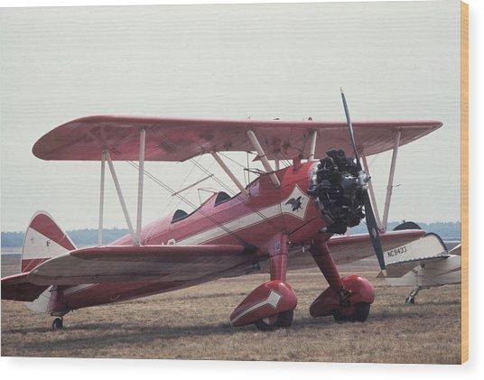 Bi-wing-9 Wood Print