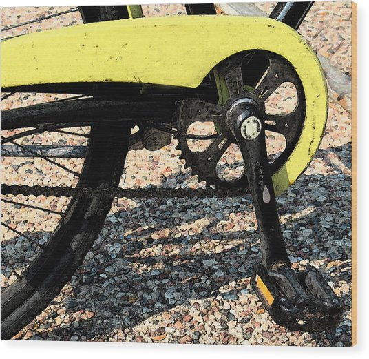 Bicycle 2 Wood Print by Gary Everson