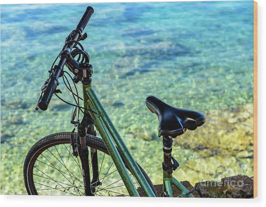 Bicycle By The Adriatic, Rovinj, Istria, Croatia Wood Print