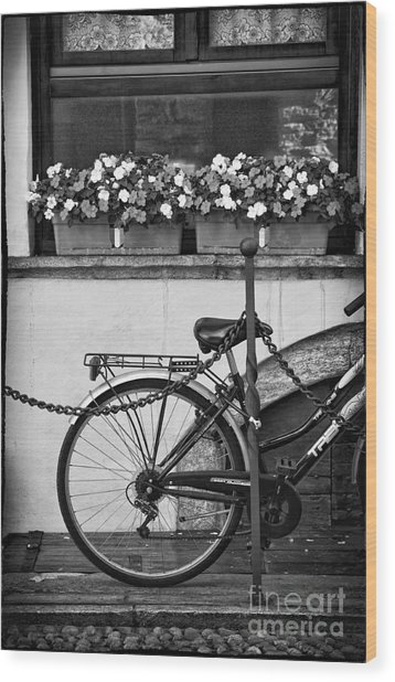 Bicycle With Flowers Wood Print