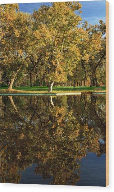 Bidwell Park Reflections Wood Print