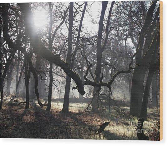 Bidwell Park Sunrise Wood Print