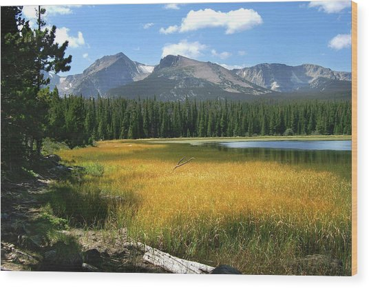 Autumn At Bierstadt Lake Wood Print