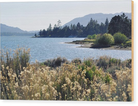 Big Bear Lake Shoreline Wood Print