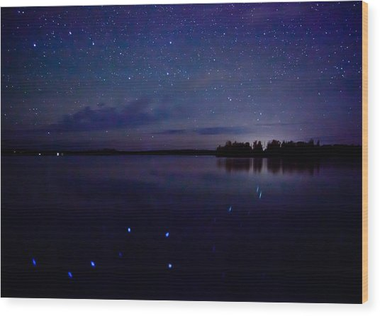 Big Dipper Reflection Wood Print