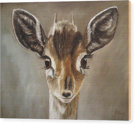 Big Eyes Dik-dik Wood Print