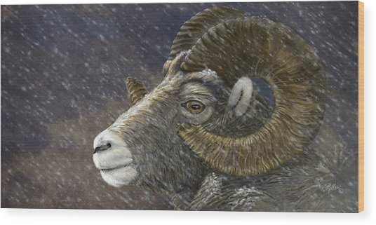 Big Horn In Snowstorm Wood Print