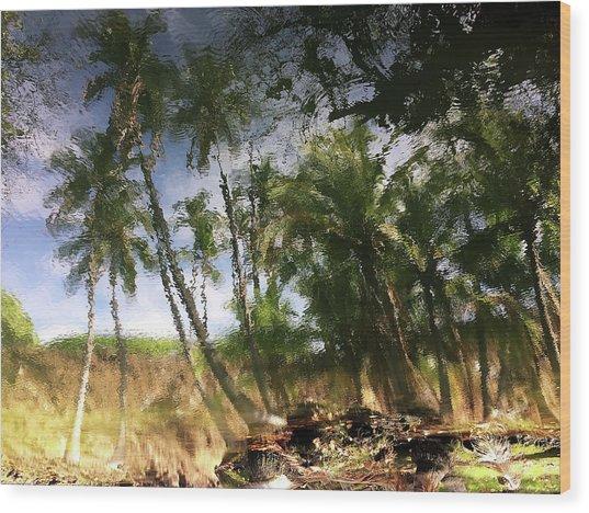 Big Island Reflections Wood Print by Art Shimamura