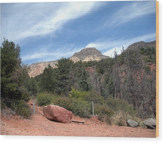 Big Sky Country Wood Print by Jeanette Oberholtzer