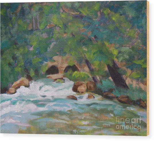 Big Spring On The Current River Wood Print