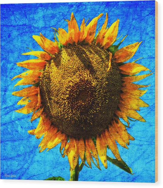 Big Sunflower Wood Print