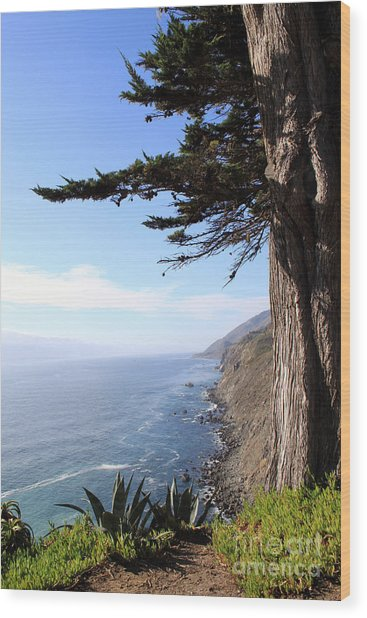 Big Sur Coastline Wood Print