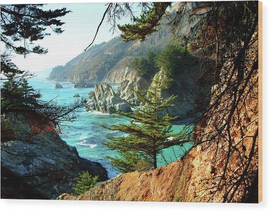 Big Sur Vista Wood Print