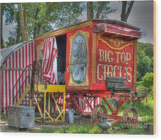 Big Top Circus II Wood Print