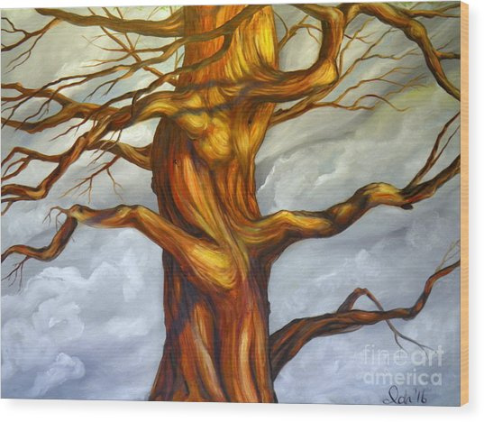 Big Tree Wood Print
