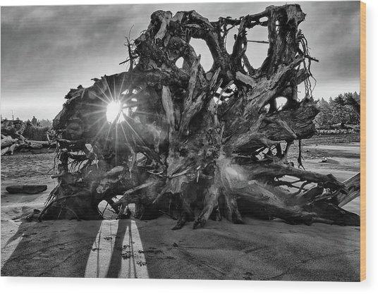 Big Tree On The Beach At Sunrise In Monochrome Wood Print
