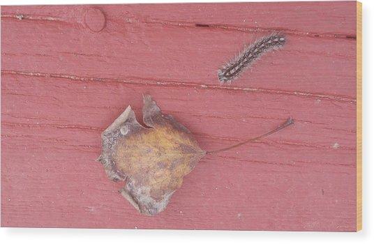Bigger Than Me Caterpillar Leaf Wood Print