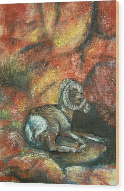 Bighorn Wood Print by Darla Joy  Johnson