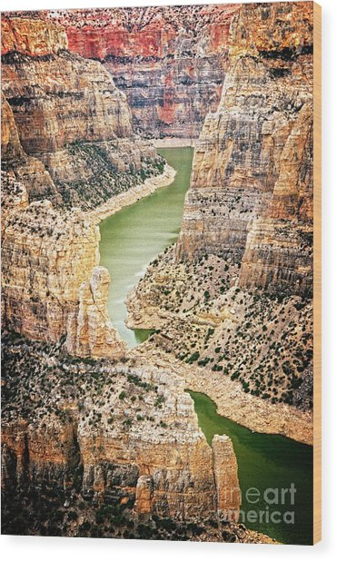 Wood Print featuring the photograph Bighorn River by Scott Kemper