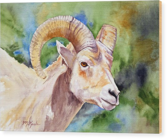 Bighorn Sheep Portrait Wood Print