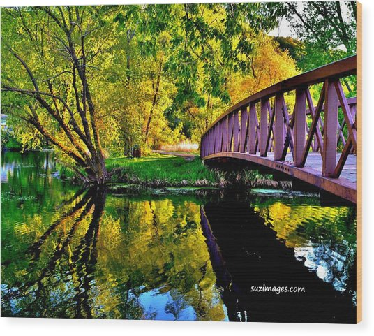 Bike Path Bridge Wood Print