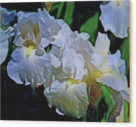 Wood Print featuring the mixed media Billowing White Irises by Lynda Lehmann