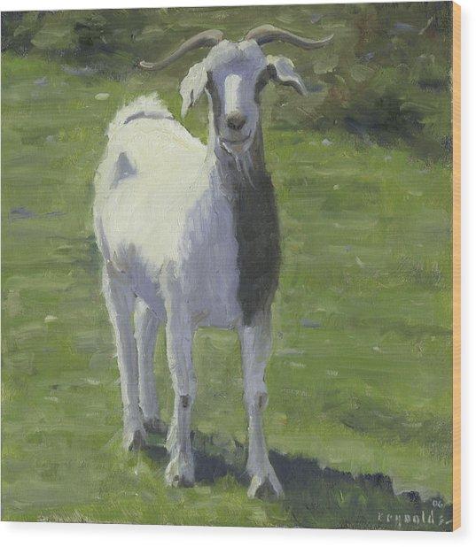 Billy Goat Wood Print