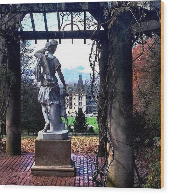 Biltmore Goddess Wood Print by Jen McKnight