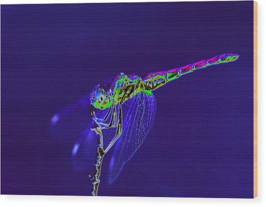 Bioluminescent Dragonfly Wood Print