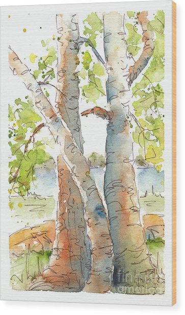 Birch Buddies Wood Print