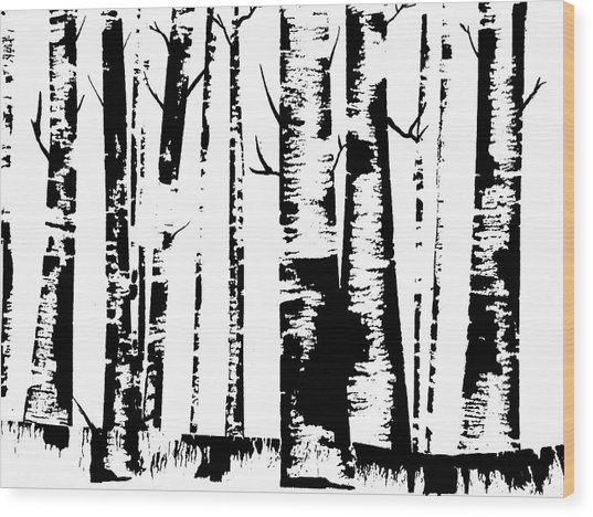 Birch Forest Black Wood Print