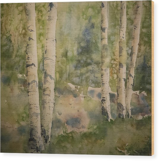 Birch Forest Wood Print