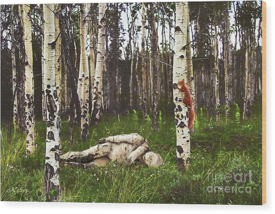 Birch Having A Tree Break Wood Print