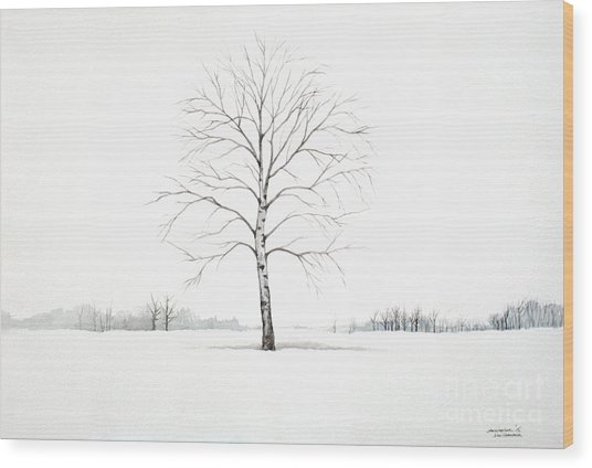 Birch Tree Upon The Winter Plain Wood Print