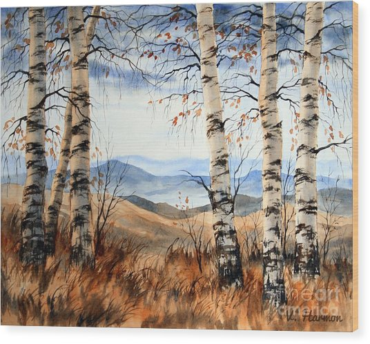 Birch Trees At Crawford Notch -1 Wood Print by Varvara Harmon