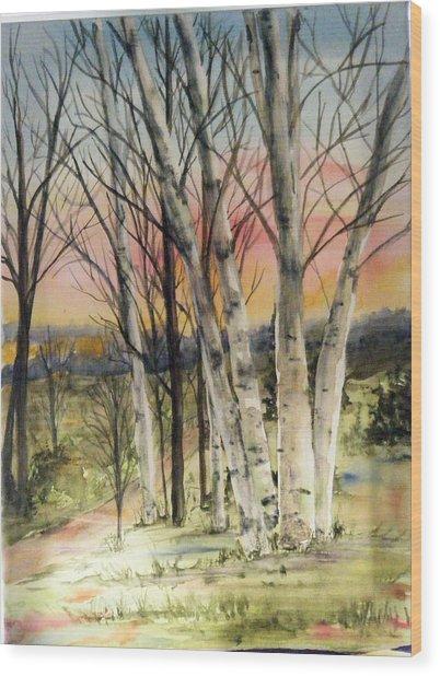 Birch Trees On Canvas Wood Print