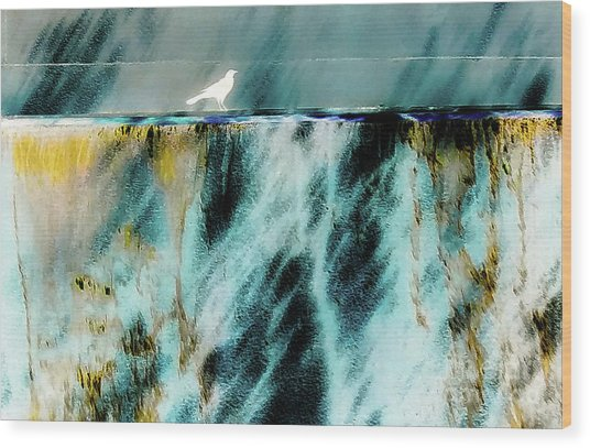 Bird At The Abstract Fountain Wood Print