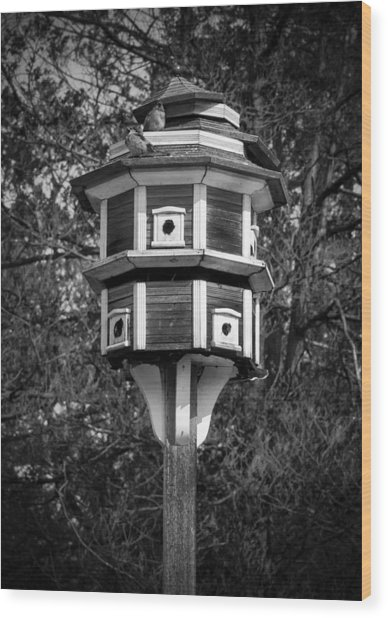 Bird House Wood Print
