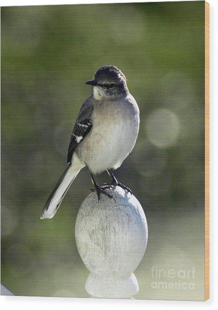 Bird Wood Print by Lynn Reid