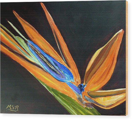 Bird Of Paradise 2 Wood Print by Maria Soto Robbins
