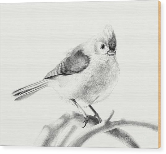 Bird On A Branch Wood Print