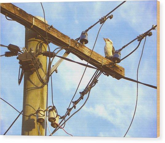 Bird On A Wire Wood Print by Evguenia Men