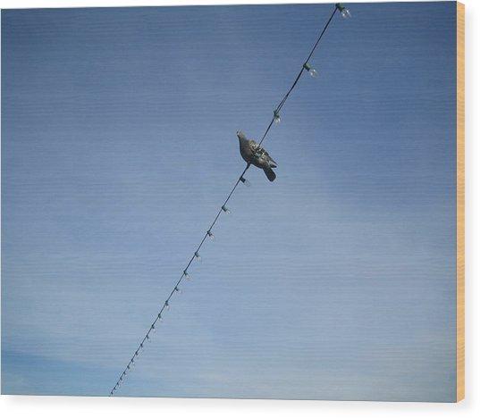 Bird On A Wire Wood Print by Tiara Moske
