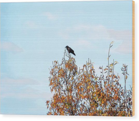 Bird On Tree Wood Print