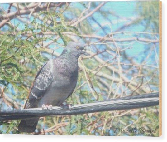 Bird Watchman Wood Print